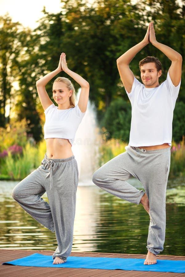 Pares da ioga que fazem a pose da árvore fotografia de stock