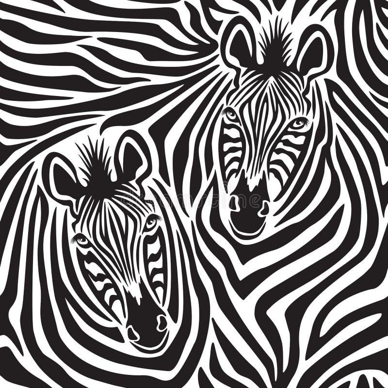 Pares da zebra ilustração do vetor