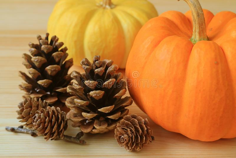 Pares de abóboras maduras da cor vibrante com muitos cones secos naturais do pinho na tabela de madeira fotografia de stock