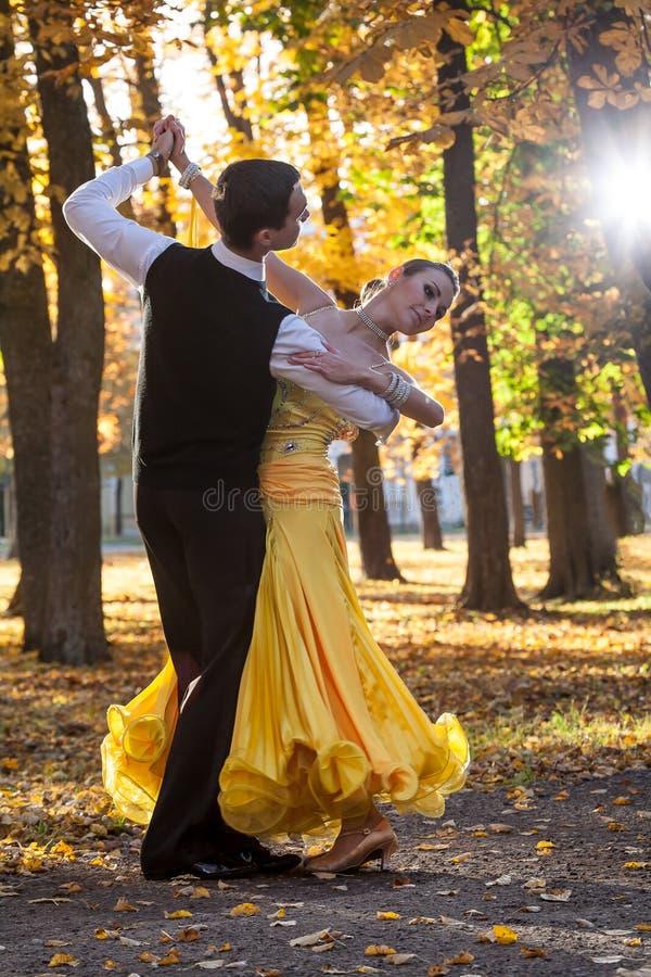 Pares de bailarines que bailan en el bosque foto de archivo