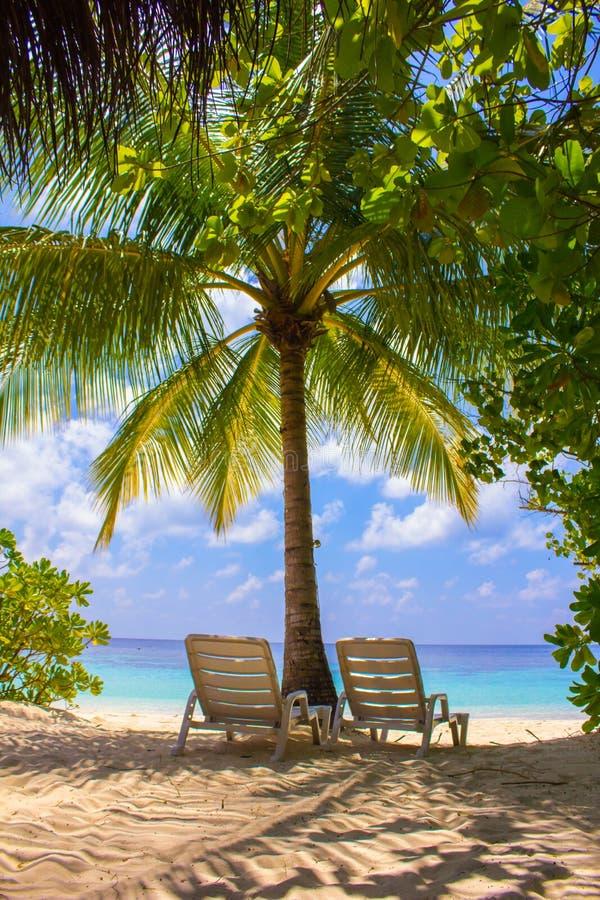Pares de cadeiras de praia em Maldivas, Eden na terra fotos de stock royalty free