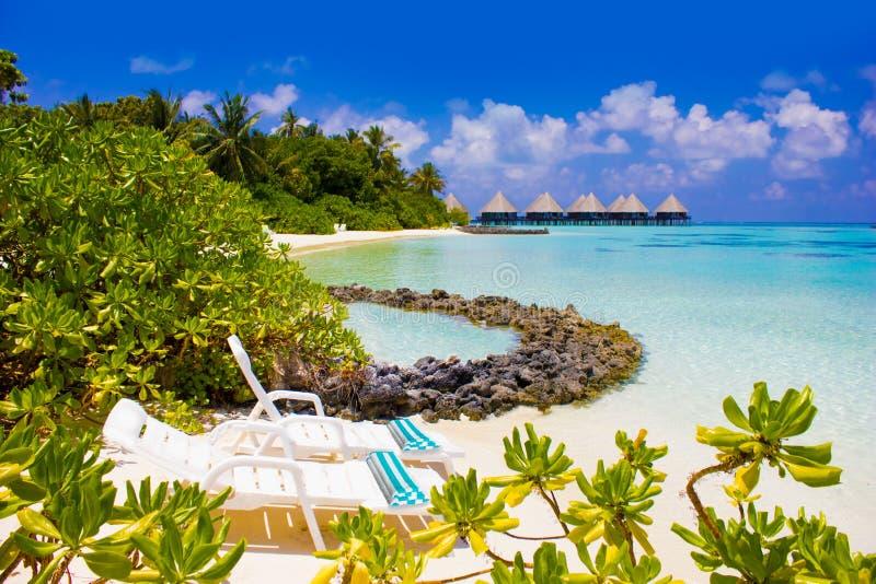 Pares de cadeiras de praia em Maldivas, Eden na terra imagem de stock royalty free