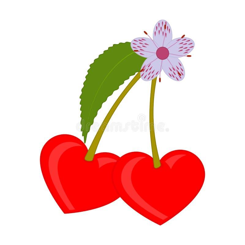 Pares de cerejas vermelhas com uma flor e um cora??o da folha dados forma ?cone do cora??o Ilustra??o lisa isolada do vetor ilustração royalty free
