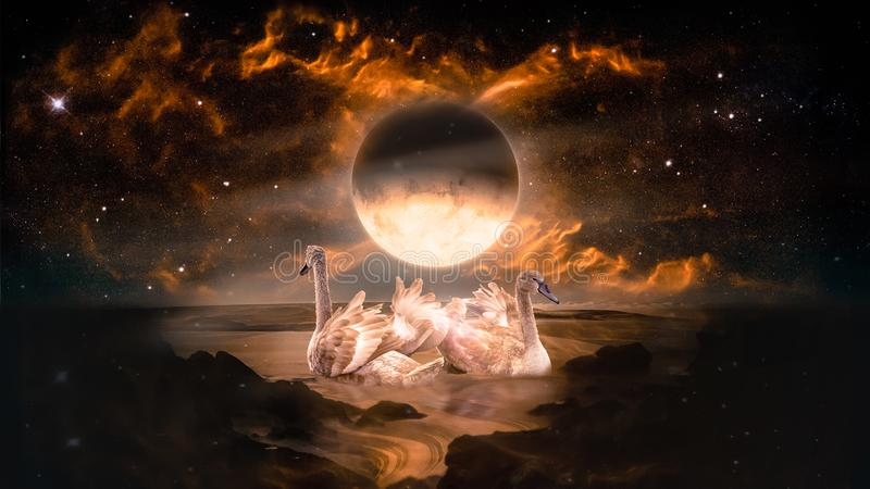 Pares de cisnes que dançam na paisagem no planeta do estrangeiro da fantasia imagem de stock royalty free