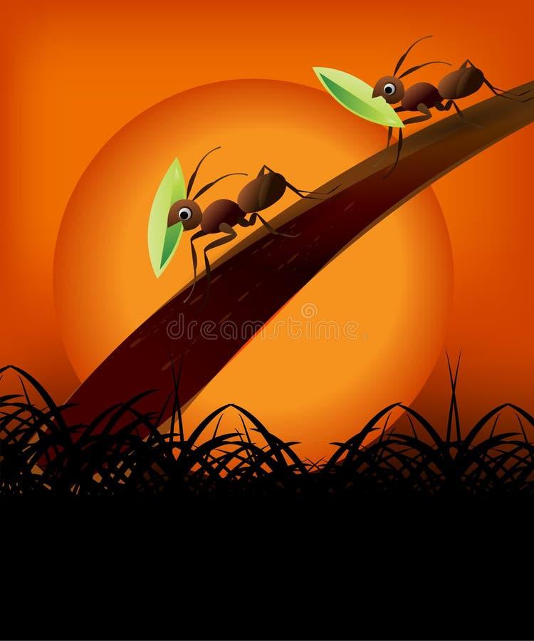 Pares de formigas no por do sol ilustração do vetor