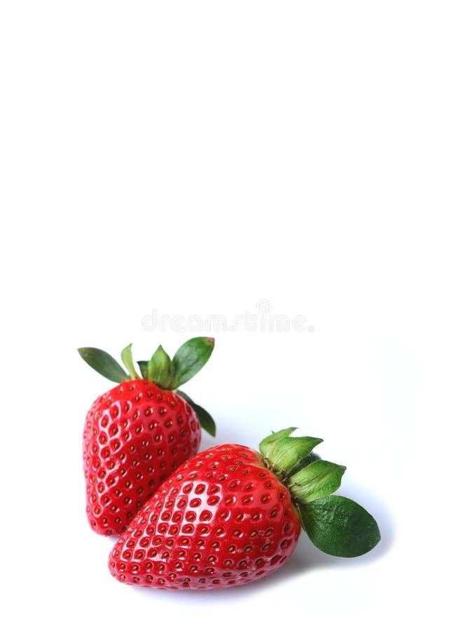 Pares de frutas maduras frescas rojas vibrantes de la fresa aisladas en el fondo blanco fotos de archivo