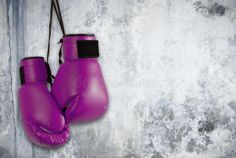 Pares de guantes de boxeo púrpuras imagen de archivo