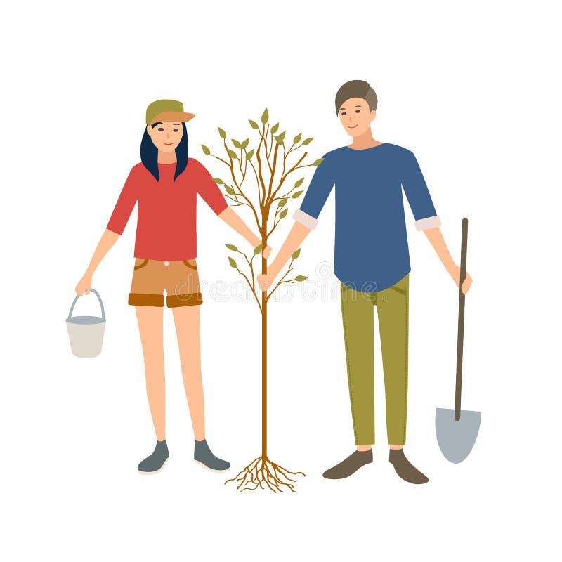 Pares de homem novo e voluntários ou ecologista alegre da fêmea que plantam a árvore no parque isolado junto no branco ilustração do vetor