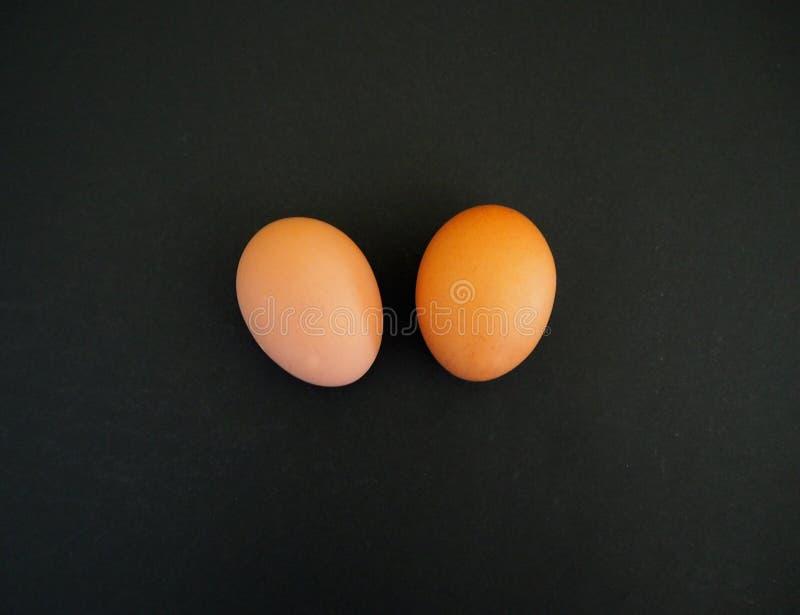 Pares de huevos marrones en el fondo negro fotos de archivo libres de regalías