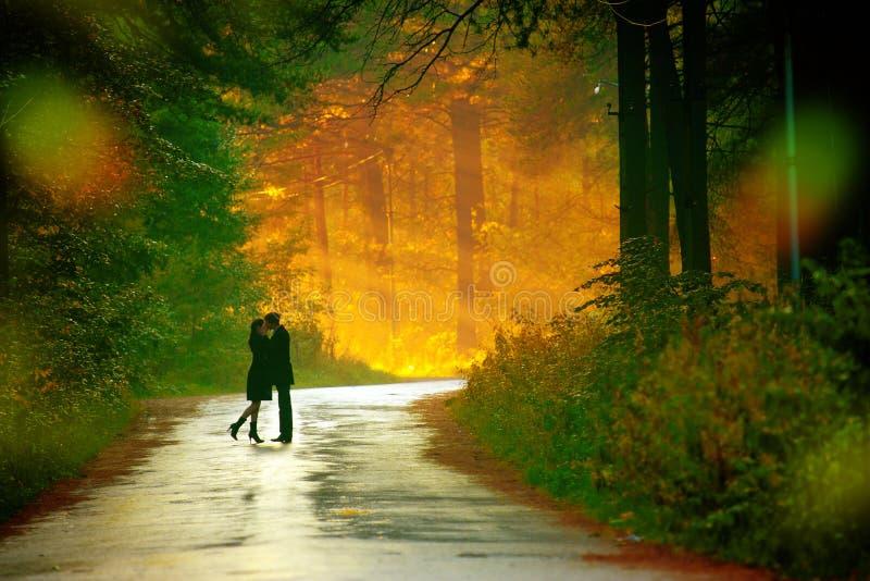 Pares de Kisssing fotografía de archivo libre de regalías