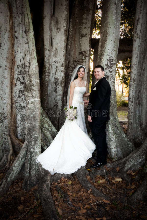 Pares de la boda bajo árbol fotografía de archivo