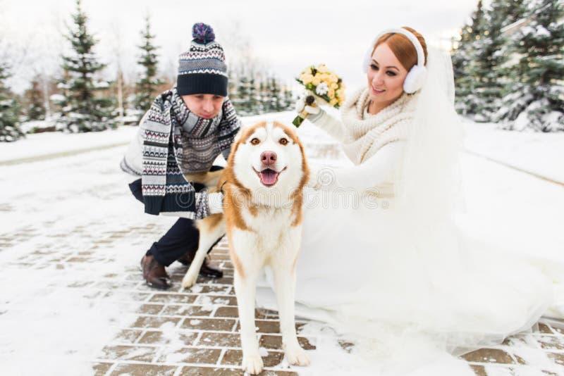 Pares de la boda con un perro en invierno fotos de archivo libres de regalías
