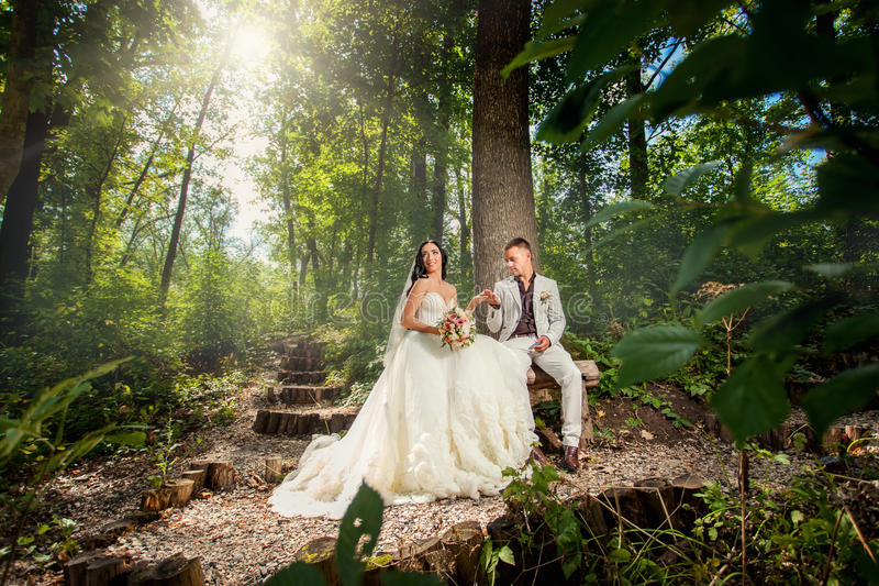 Pares de la boda de la belleza en el bosque foto de archivo