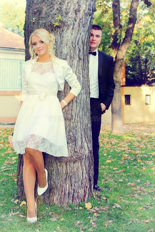 Pares de la boda en árbol foto de archivo libre de regalías