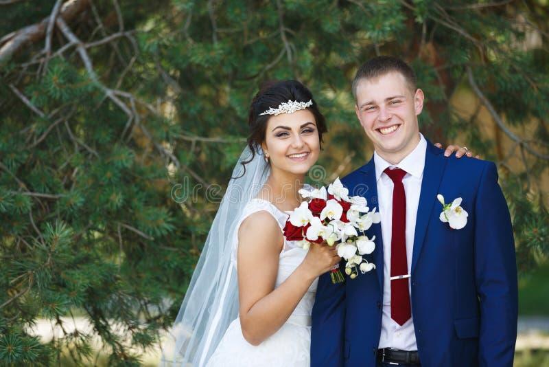 Pares de la boda en el bosque del pino imágenes de archivo libres de regalías