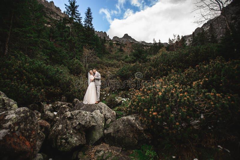 Pares de la boda que caminan cerca del lago en las monta?as de Tatra en Polonia Morskie Oko D?a de verano hermoso imágenes de archivo libres de regalías