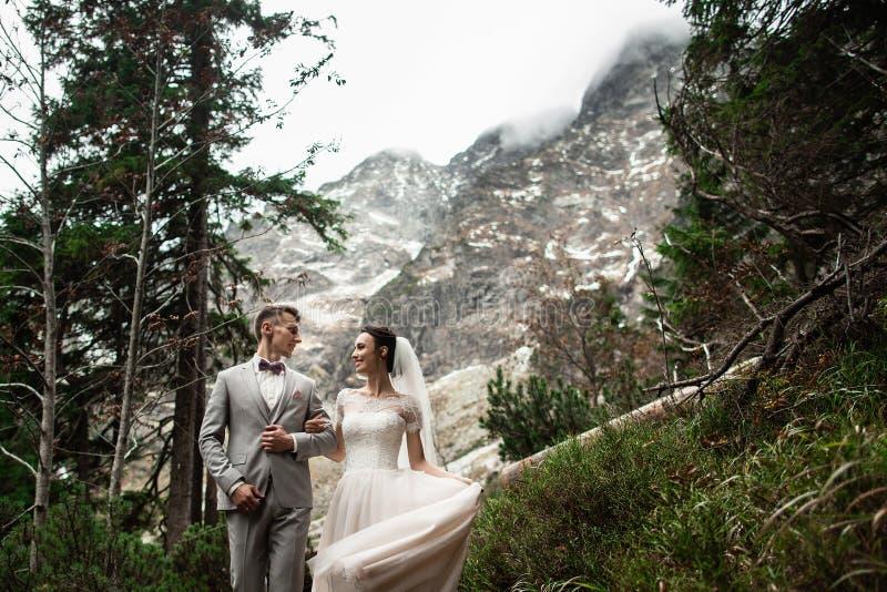 Pares de la boda que caminan cerca del lago en las monta?as de Tatra en Polonia Morskie Oko D?a de verano hermoso imagen de archivo libre de regalías