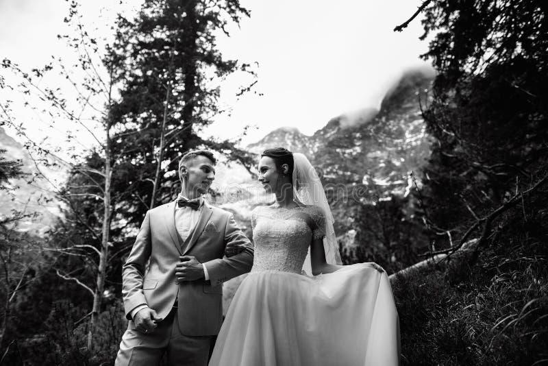Pares de la boda que caminan cerca del lago en las montañas de Tatra en Polonia Morskie Oko Opción blanco y negro de la foto foto de archivo