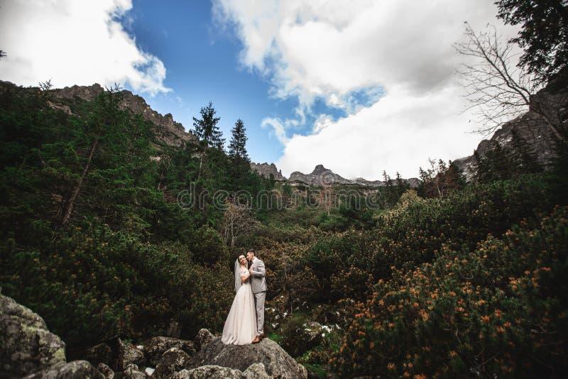 Pares de la boda que caminan cerca del lago en las monta?as de Tatra en Polonia Morskie Oko D?a de verano hermoso foto de archivo libre de regalías