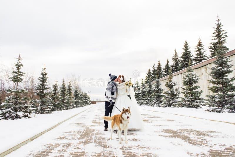 Pares de la boda y un perro lindo en invierno imagen de archivo libre de regalías