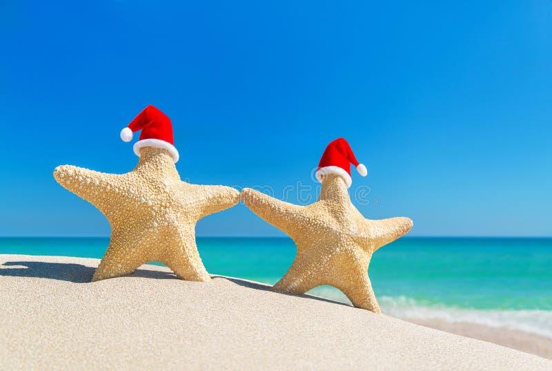Pares de las estrellas de mar en los sombreros rojos de Papá Noel en la playa tropical arenosa imagen de archivo