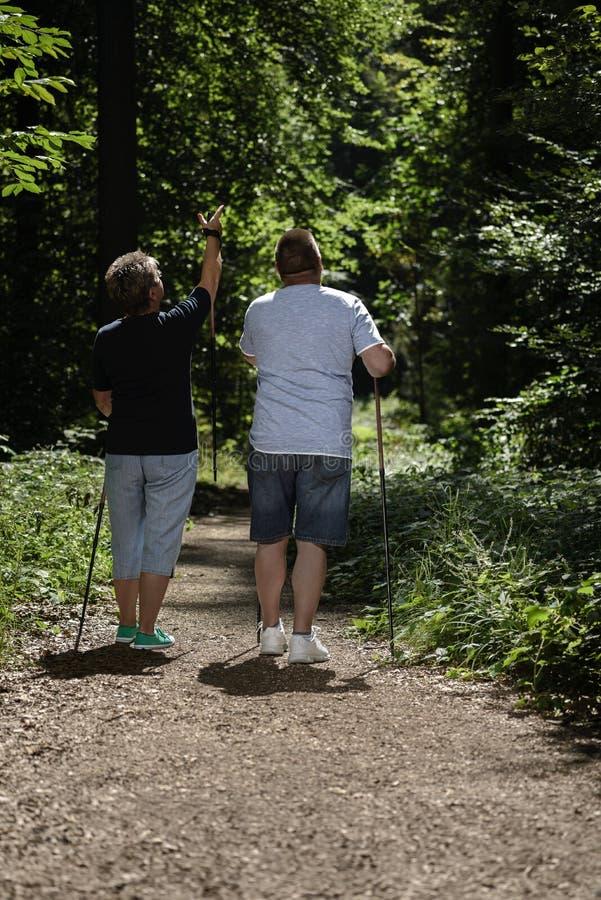 Pares de los mayores que caminan la reconstrucción del bosque fotos de archivo