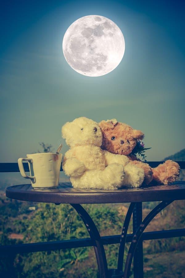Pares de los osos de peluche del concepto con amor y relación para valent fotografía de archivo