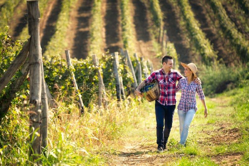Pares de los viticultores que caminan en viñedo fotografía de archivo libre de regalías