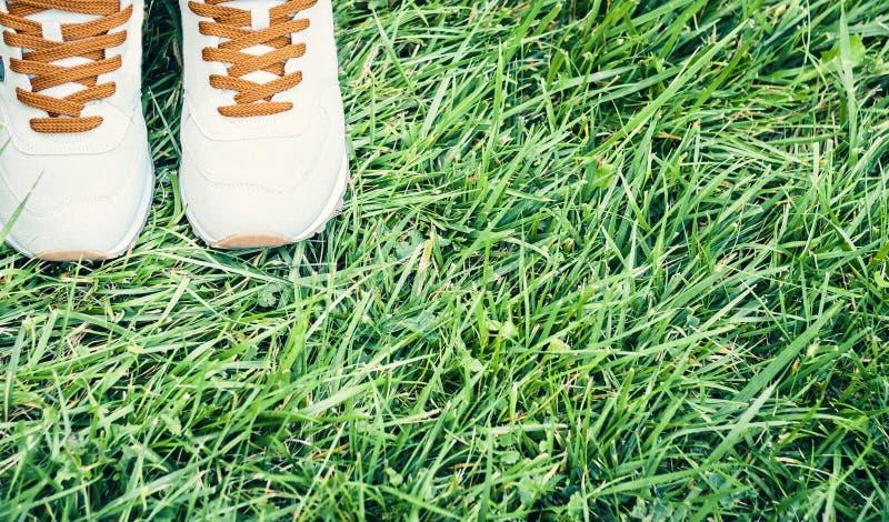 Pares de sapatas do esporte da camur?a cinzenta na grama no parque imagem de stock
