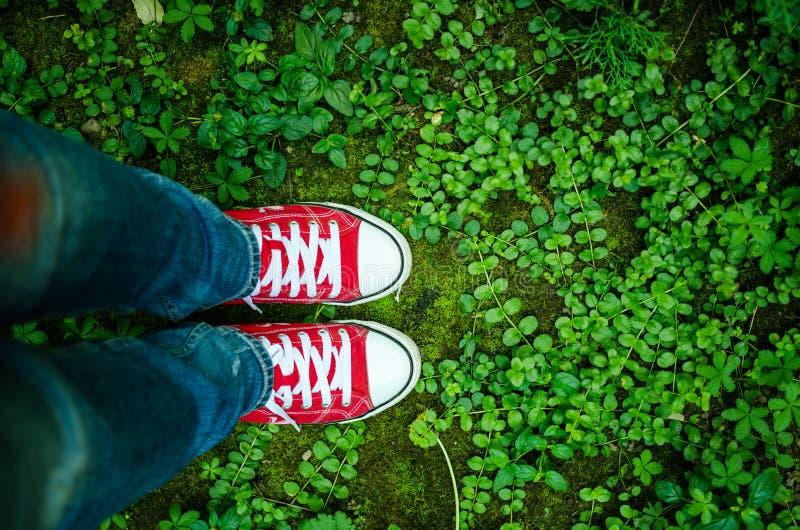 Pares de sapatilhas e de vegetação foto de stock