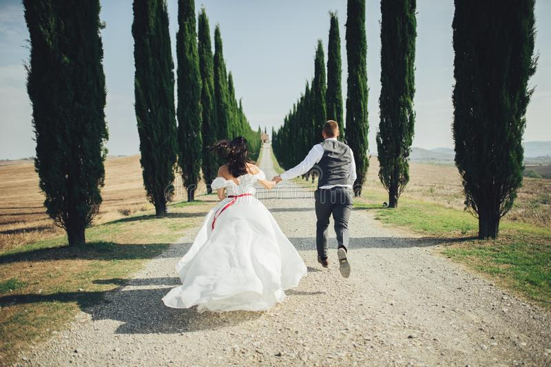 Pares de sorriso à moda felizes que andam e que beijam em Toscânia, AIE fotografia de stock royalty free