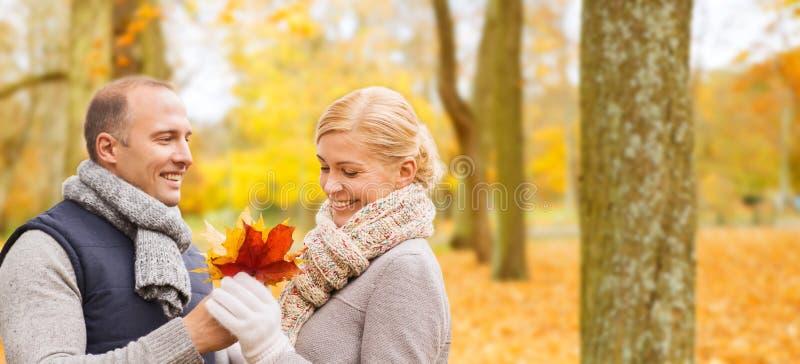 Pares de sorriso no parque do outono foto de stock