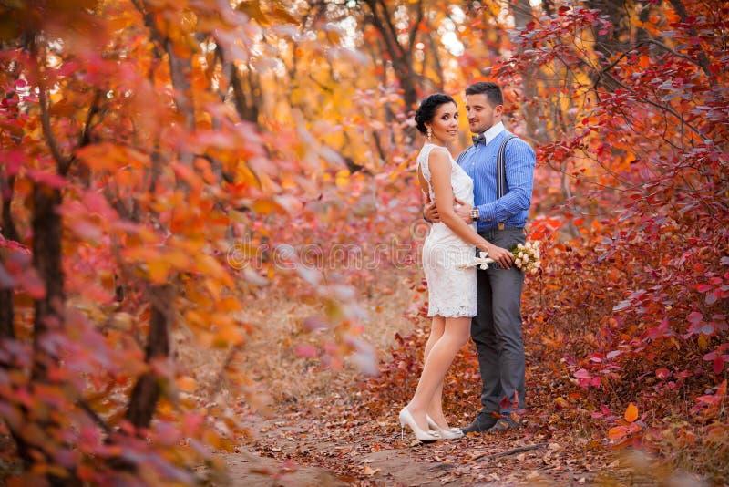 Pares de sorriso que abraçam no parque do outono Noivos felizes na floresta, fora imagens de stock