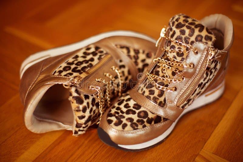 Pares de zapatos de las zapatillas de deporte de la moda aislados en backgrou de madera del piso imágenes de archivo libres de regalías
