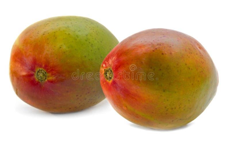 Pares del mango aislados imagenes de archivo