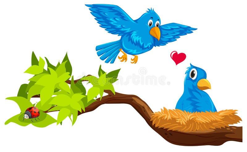 Pares del pájaro en jerarquía libre illustration