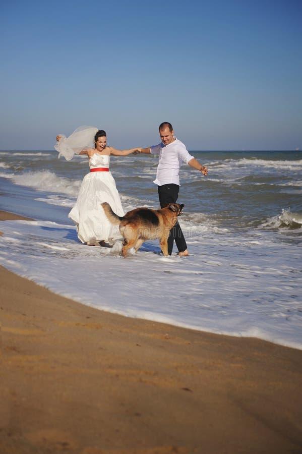 Pares del recién casado que celebran matrimonio al aire libre con su perro de pastor alemán foto de archivo