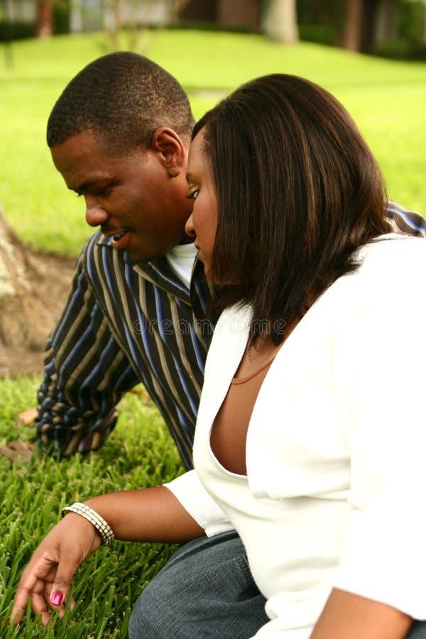 Pares do americano africano que falam na grama imagens de stock royalty free