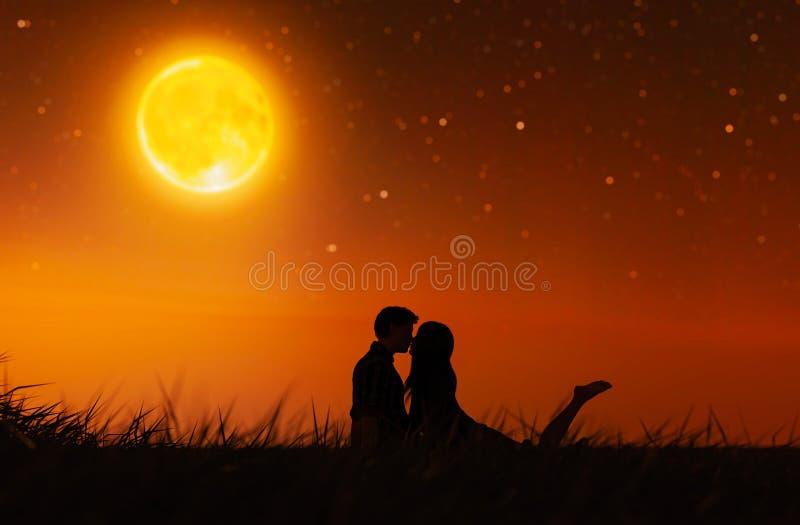 Pares do amor sob o luar ilustração stock