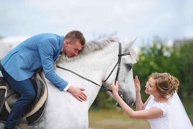Pares do casamento com cavalo branco fotografia de stock royalty free