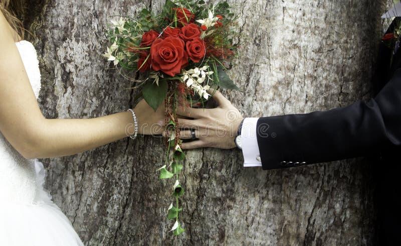 Pares do casamento dos pares fotos de stock royalty free