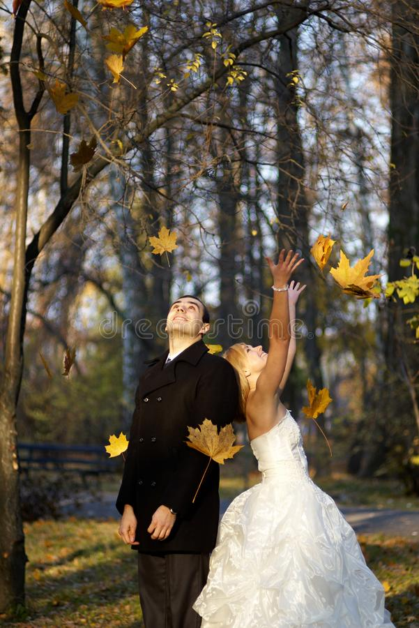 Pares do casamento no parque do outono Casal no dia do casamento imagem de stock