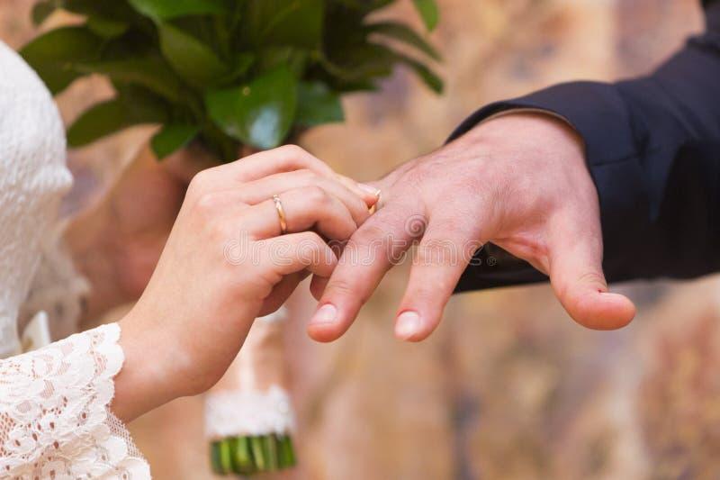 Pares do casamento - noivos - alianças de casamento vestindo entre si imagem de stock