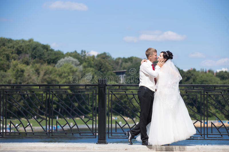 Pares do casamento que afagam na ponte foto de stock