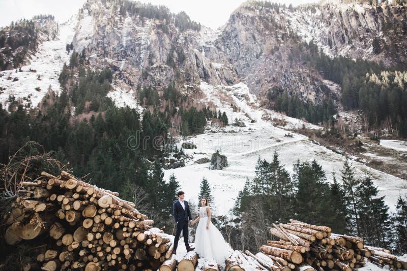 Pares do casamento que mantêm as mãos, o noivo e a noiva unida no dia do casamento fotografia de stock