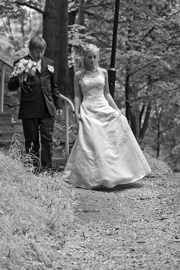 Pares do Newlywed na floresta foto de stock