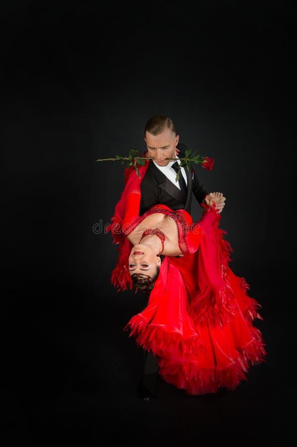 Pares do salão de baile da dança imagem de stock royalty free