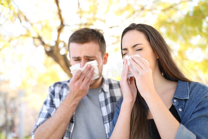 Pares doentes que espirram junto em um parque imagem de stock royalty free