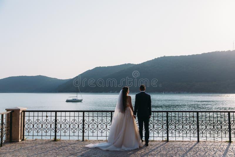Pares dos recém-casados da vista traseira, noivos que guardam as mãos em um fundo do lago Menina bonito no vestido branco, homens fotos de stock