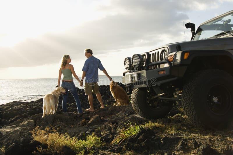 Pares e cães na praia imagem de stock royalty free